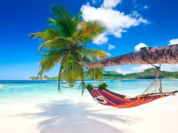Rejser til Seychellerne